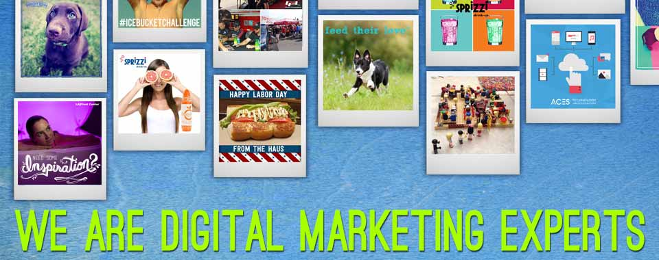 we-are-digital-marketing-experts copy